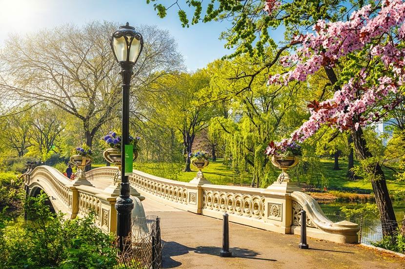 Bow Bridge a Central Park di New York 2