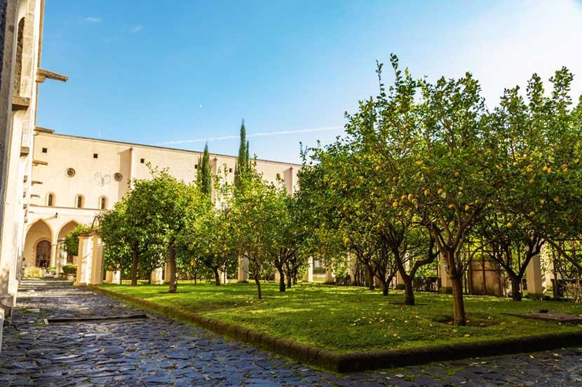 Piante di agrumi nel Dettaglio Chiostro del Monastero di Santa Chiara a Napoli